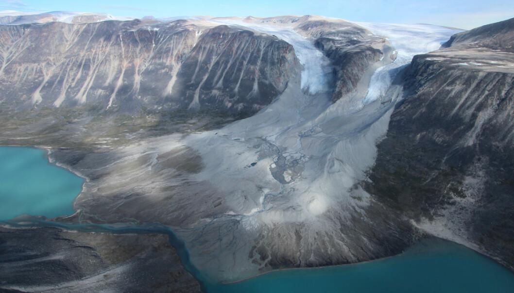 Isbreer skyver stein og grus foran seg til en endemorene. Jo kaldere det blir, desto større blir isbreene og desto lengre fram skyver de steinene i endemoren. Slik har forskere funnet ut at isbreene på Grønland var større i vikingtiden enn nå. Det betyr at Grønland må ha vært kaldt også den gangen norske og islandske vikinger bosatte seg her med folk og fe. Hvis de nye forskningsresultatene stemmer, var det altså ikke kulda som tok knekken på kolonien noen hundre år seinere. Dissse breene på Vest-Grønland er klart mindre i dag enn i tidligere tider. (Foto: Jason Briner)