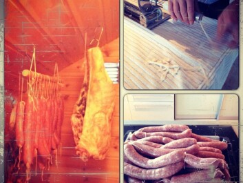 Stuffing, curing and eating sausages is an important tradition in the Eikevik household. (Photo: Rikke Eikevik)