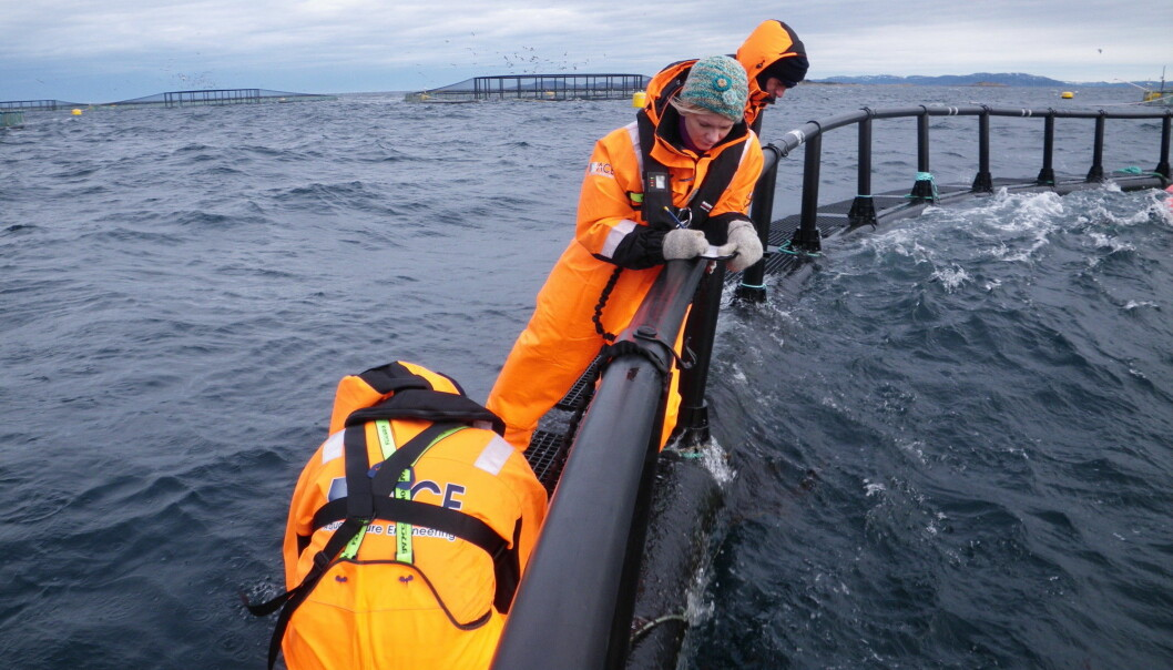 There have been situations where workers have fallen into the sea. (Photo: SINTEF Health Research)