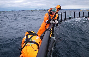 Tailor-made for the aquaculture sector