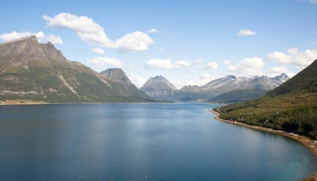 Norway is a cold country, but would have been even colder if the Gulf Stream flowed faster past the rugged coast. (Photo: iStockphoto)