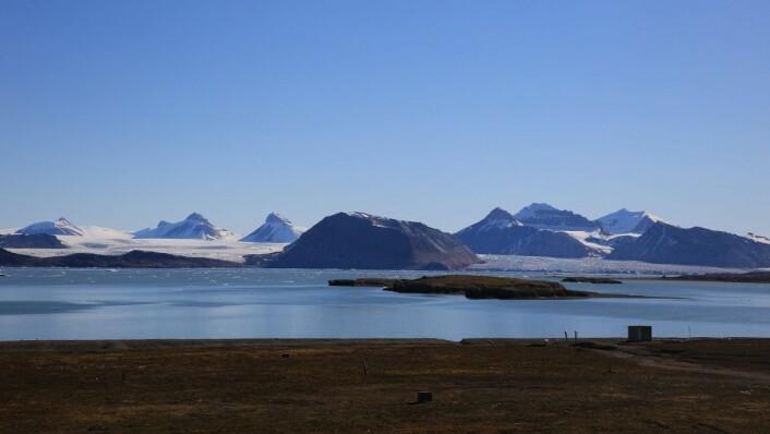 Kongsfjorden på Svalbard. (Foto: Ingvill Warholm, Warholm Film)