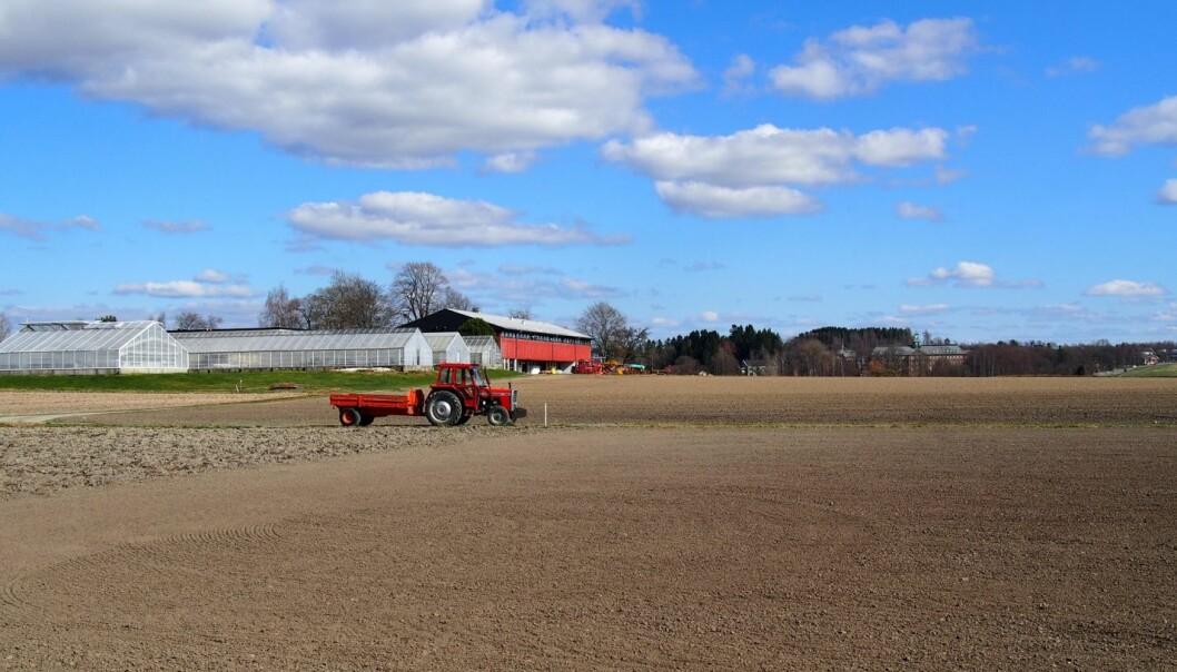 Dagens jordbrukspraksis kan være skadelig for jorden og føre til dårlig jordkvalitet som for eksempel pakkingsskader på grunn av tung maskinvare.  (Foto: Kathrine Torday Gulden )
