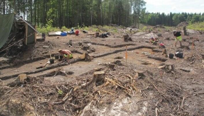 Exceptional Stone Age Norwegian excavated