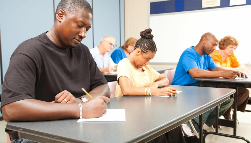 Professor synes det er meningsløst å sette voksne asylsøkere på skolebenken og mener de i større grad må «ta seg fram selv». (Illustrasjonsfoto: Lisa F. Young, Shutterstock, NTB scanpix)