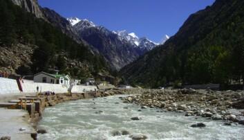 Bhagirathi-elven er den største tilløpselven til Ganges. Den dannes av smeltevann fra Gangrotibreen i Himalaya. (Foto: Wikimedia Commons)