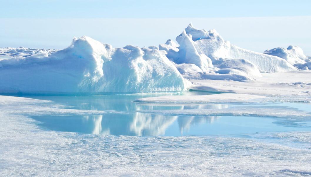 I Arktis er det fred og fordragelighet – også politisk. De arktiske statene har nemlig økonomiske interesser på Nordpolen, som inneholder ressurser som mineraler, gass, olje og fisk.  (Foto: Christopher Wood, Shutterstock, NTB scanpix)