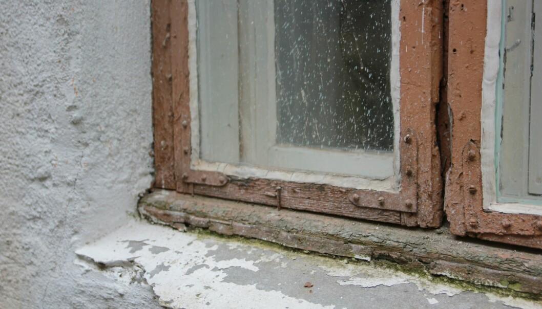 Eldre vindu i en bygård på Grünerløkka i Oslo. Gamle vinduer i et verneverdig bygg kan ikke skiftes, men de kan tettes, isoleres og repareres, ifølge kulturminneforskere.  (Foto: NIKU)