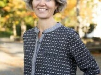 Gunhild Setten is a Professor of Geography at NTNU and heads up the ClimRes research project. (Photo: NTNU)