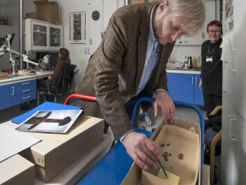 Vennatrø and Airola are among those who have examined the Viking finds. (Photo: Åge Hojem, NTNU University Museum)