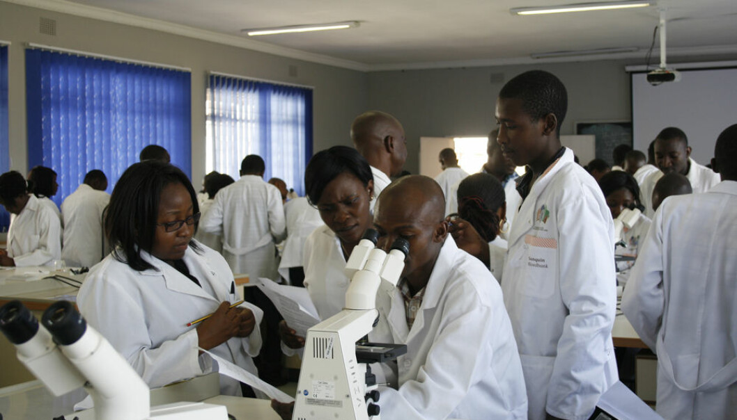 Students doing microscopy at the lab at UNZA (Photo: Susan Johnsen)