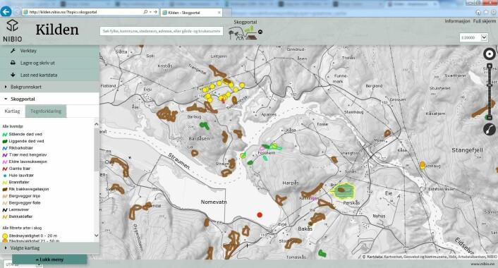 Eksempel på utsortert informasjon som typisk kan inngå som del av en skograpport.  (Foto: (Skjermdump: Fra Skogportalen))
