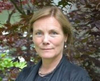 Birgit Lie behandler flyktninger med traumer etter krig og terror ved Sørlandet sykehus. Hun mener at helsevesenet alene ikke klarer å hjelpe alle flyktningene med sine psykiske problemer. Vanlige folk må også hjelpe til.  (Foto: Sørlandet sykehus)