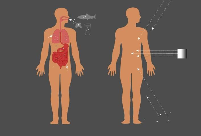 Figuren viser hvordan vi blir utsatt for stråling: Innvendig gjennom mat og drikke og pusting, eller utenfra, ved strålingen fra et røntgenapparat, radioaktive stoffer i bakken eller ved stråling fra verdensrommet. (Foto: (Illustrasjon: Mari Komperød))