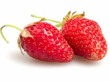 Consumers should be allowed to choose whether they want to eat strawberries from normal strawberry fields sprayed with pesticides many times in a short summer, or genetically modified strawberries that are sprayed just a few times, says Biology Professor Atle Bones.