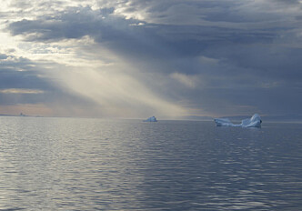 The Arctic is getting wetter