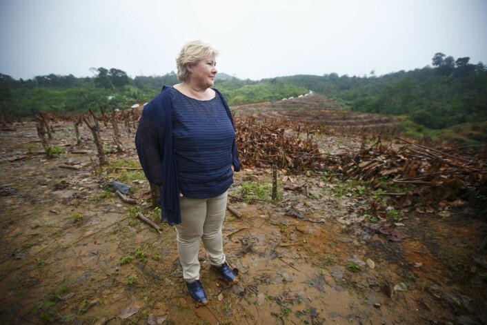 Statsminister Erna Solberg (H) i et område hvor regnskogen er hogget ned på øya Sumatra i Indonesia i april i år. (Foto: Heiko Junge, NTB scanpix)