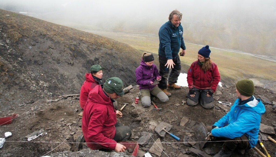 Professor Jørn Hurum ledet i sommer en ekspedisjon på Svalbard, for å finne ut av hvordan livet kom seg igjen etter den aller største masseutryddelsen for 252 millioner år siden, da 92 til 97 prosent av alle artene på jorda døde ut på kort tid.  (Foto: Yngve Vogt)