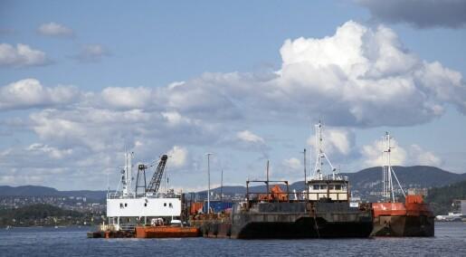 Sanddekket holder mål i Malmøykalven