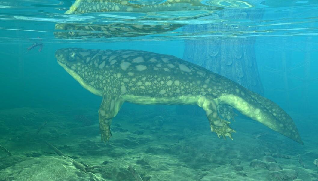 Eigil Nielsen fant i 1931 fossilet av fisken med de fire beina, Ichthyostega. (Illustrasjon: Science Photo Library)