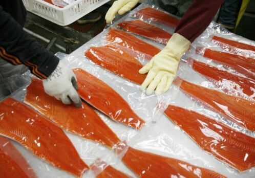 Chinese boycott of Norwegian salmon industry unsuccessful