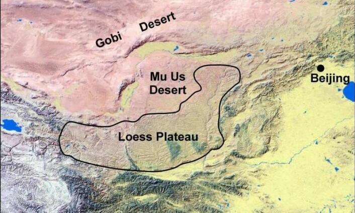 Det kinesiske løssplatået ligger sør for Gobiørkenen, vest for Beijing. Området har i de siste 3,6 millionene år blitt bygget opp av løssavleiringer og dekker nå et område på størrelse med Frankrike.  (Foto: Paul Kapp, University of Arizona, USA)