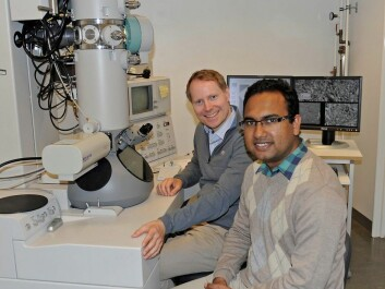 Tor Paaske Utheim and Rakibul Islam (from the left.) at the Institute for Oral Biology. They research how to cure certain kinds of blindness in a global context. (Photo: Per Gran, OD/UiO)