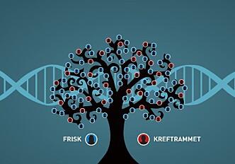 Family's hereditary cancer gene found