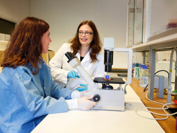 Ragnhild Eskeland and Erasmus student Gema Escribano Serrano at the Department of Biosciences. They study human stem cells that can differentiate into neural cells. This is the closest they get to a model of neural development in foetus. They can, for example, look at how drugs like paracetamol affects epigenetic labeling in stem cells and neural cells. (Photo: Terje Heiestad, Millimeterpress)