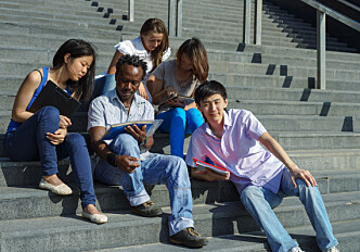 Common group identity may motivate integration efforts