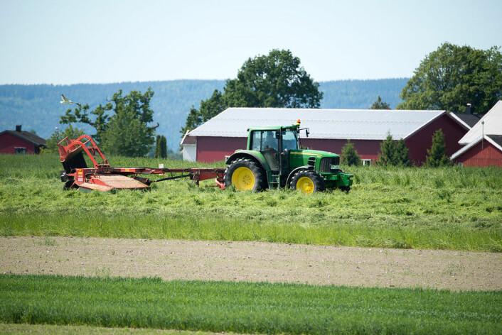 Hausting av gras og andre landbruksprodukt føresetter godt og tenlig ver. Uvissa er stor. Biletet er teken i Ås i Akershus.  (Foto: Erling Fløistad)