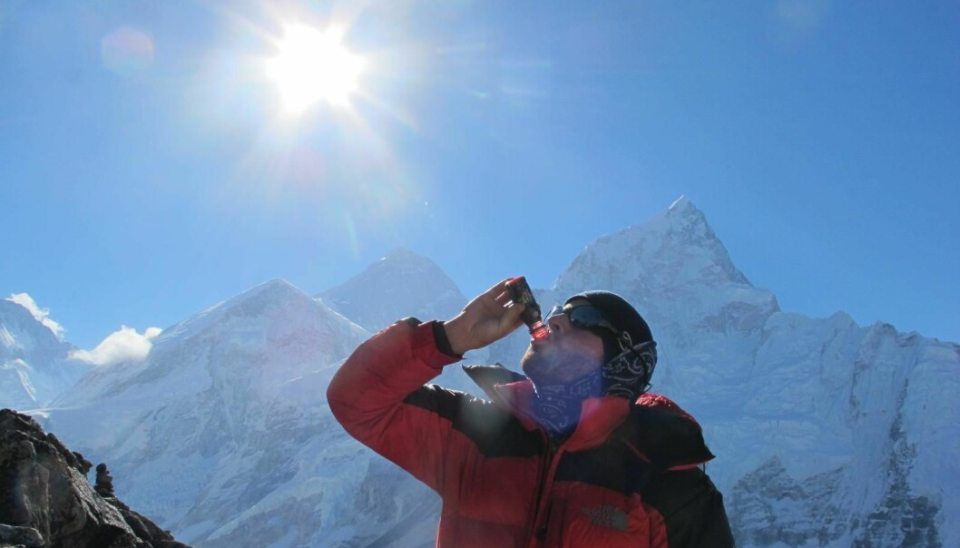 Drinking beet juice can help the human body cope with high altitudes. Here, a study subject drinks beet juice with Mt. Everest in the background. (Photo: Harald Engan, Mid Sweden University)