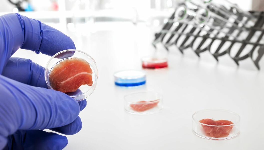 Laboratoriedyrket kjøtt – fremtidens mat eller «Franken-meat»?