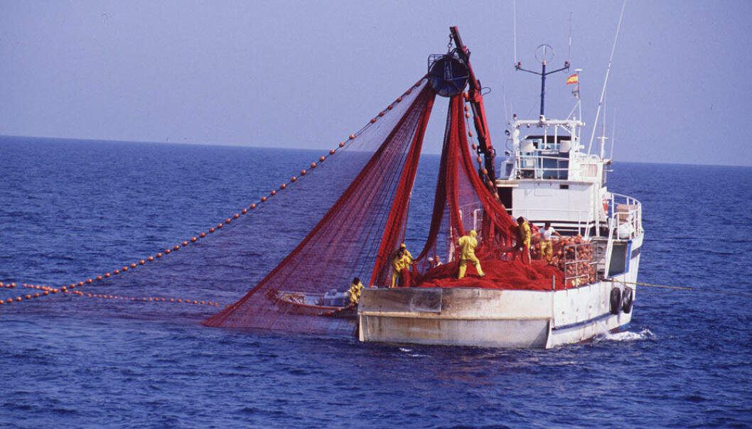 The desire to improve safety at sea must come from the fishermen themselves. (Photo: Colourbox)
