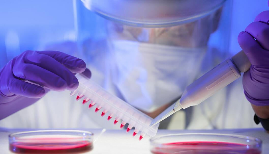 Forskning på kreftbehandling og parasittologi har slått seg sammen i en ny studie som viser at et malariaprotein kanskje kan brukes som et våpen mot kreft.  (Illustrasjonsfoto: Microstock)