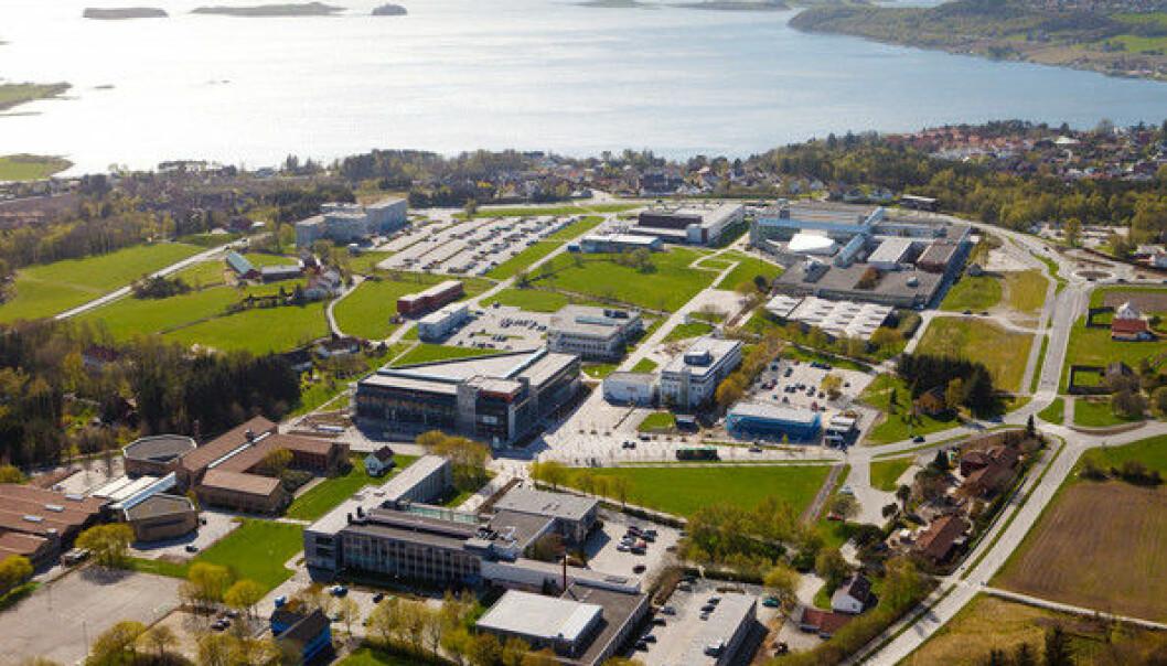 Universitetet i Stavanger har tatt initiativ til å få mer trøkk i nyskapingen som skjer fra forskningsmiljøene i regionen.  (Foto: UiS)