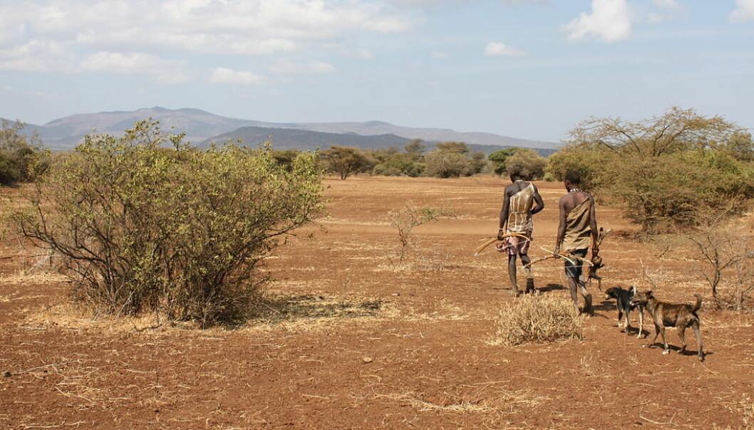 Jegerne er medlemmer av Hadza-folket, en folkegruppe som lever i Tanzania. De har vært med på den nye søvnstudien. (Foto: Andreas Lederer/CC BY 2.0)
