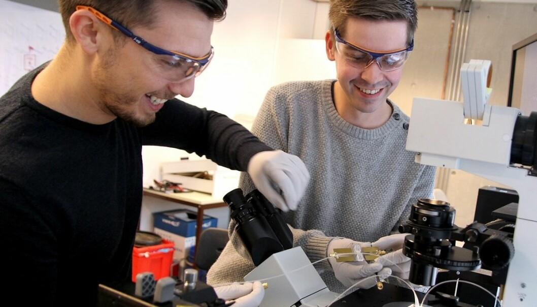 Doktorstipendiatene Armend Gazmeno Håti og Jonas Myren Ribe samarbeider om å finne nye løsninger for diagnostisering og behandling. (Foto: Per Henning, NTNU)