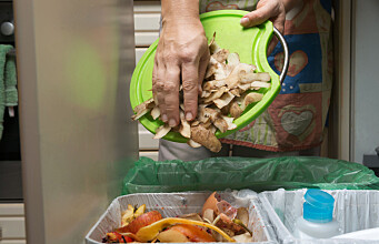 Food waste recycling not always the best idea