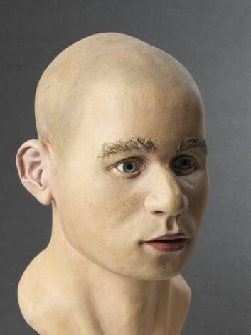I 2011 ble det laget en rekonstruksjon av Visteguttens hode, slik han kan ha sett ut. Det var mastergradsstudenten Jenny Barber fra universitetet i Dundee som lagde denne modellen.    (Foto: Terje Tveit, Arkeologisk museum, Universitetet i Stavanger)