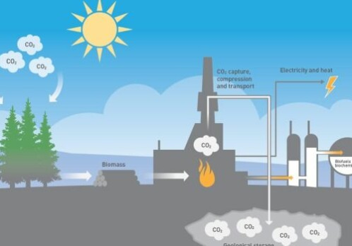 Technology that removes carbon dioxide from the atmosphere