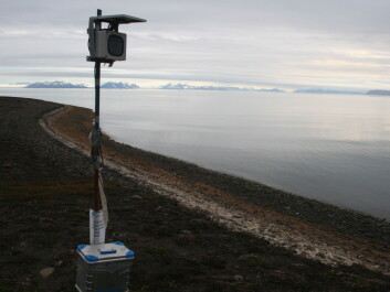A time-lapse camera set up on an eroding cliff in Svalbard helped researchers see the mechanisms that were chewing away at the cliff and causing it to fall into the sea. (Photo: Emilie Guegan)