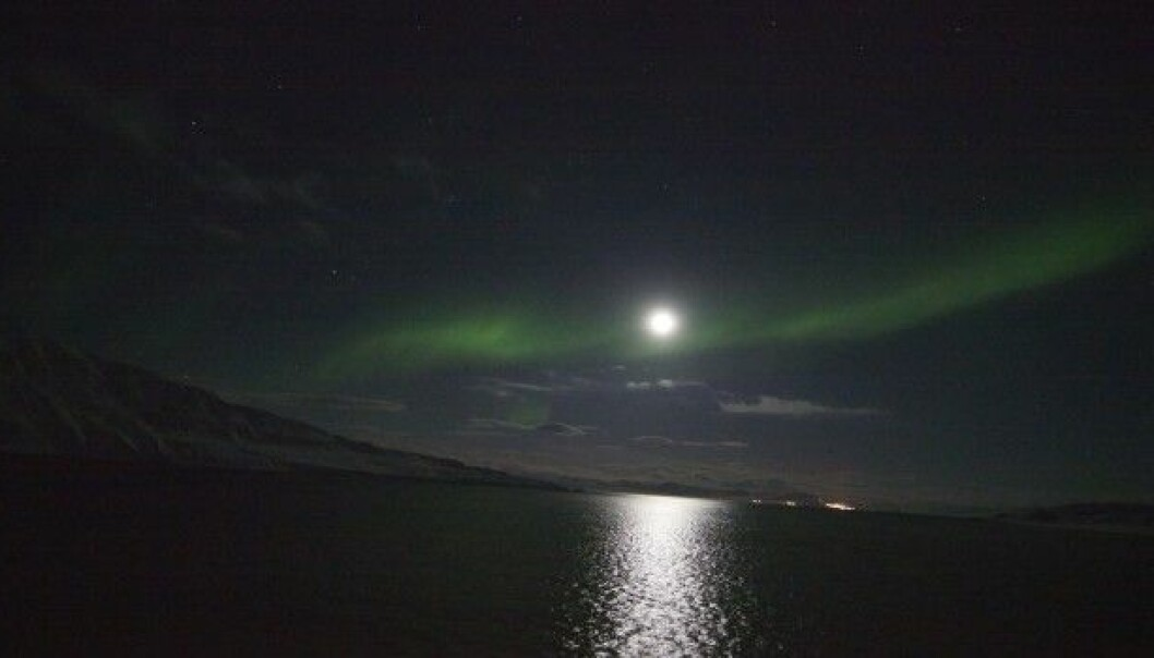 Moonlight and even the northern lights provide enough light to alter the behaviour of creatures that live in the polar oceans. Researchers once thought that the polar night was a time when most organisms were inactive, but now they know the oceans are alive with activity. (Photo: Geir Johnsen, NTNU/UNIS)