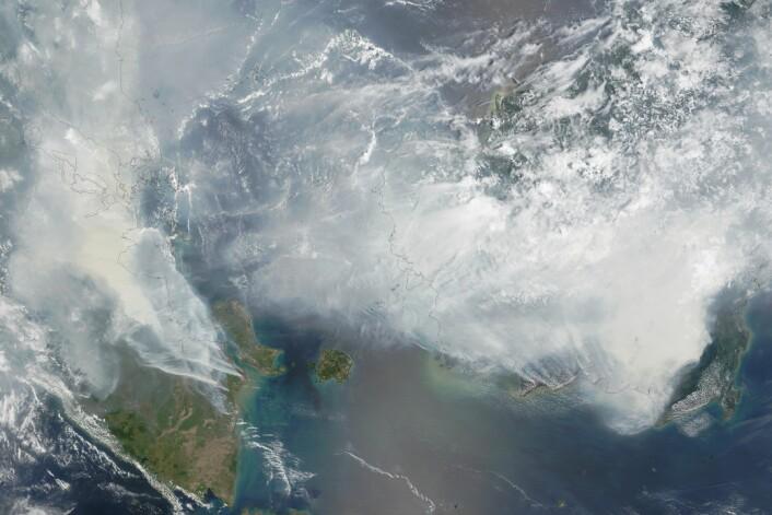 Bildet er tatt 24. september, og er fra NASAs Terra-sattelitt. Det viser branner på Sumatra (til venstre) og Borneo (til høyre). De røde flekkene viser hvor det er varmest. (Foto: NASA Earth Observatory)