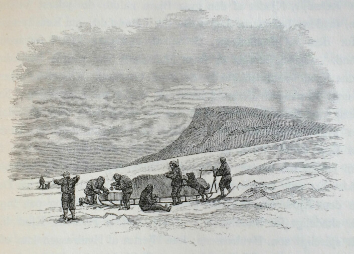 """""""Fordeling af Bjørnekjød før Maaltidet"""". Under den andre sledereisen på Frans Josefs land. Payer 1877, s. 285. (Foto: (Tegning: Julius Payer))"""