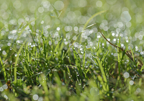 Understanding tiny droplets can make for better weather forecasts