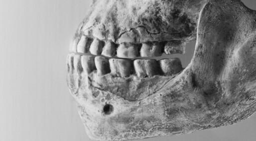Neandertalere brukte tannpirkere til smertelindring