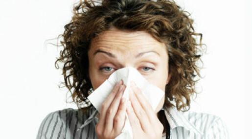 Tror influensatoppen er nådd