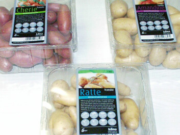 Today more than fifty different varieties of potato can be found in Norwegian shops during the course of the year. (Photo: Audun Iversen, Nofima)