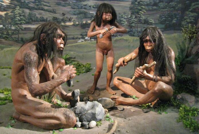 Ifølge Peter C. Kjærgaard skjedde tapet av kroppshår gradvis, og skjøt for alvor fart da Homo erectus jaktet på dyr på savannen.